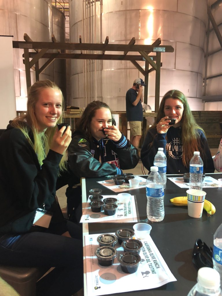 Students tasting olive oil