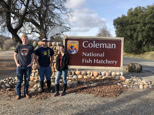 Coleman Fish Hatchery