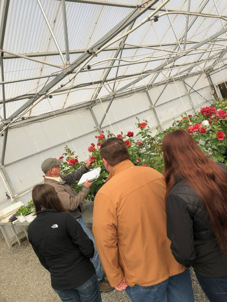 It Was Coming Up Roses In Wasco Ca Youth Program Blog