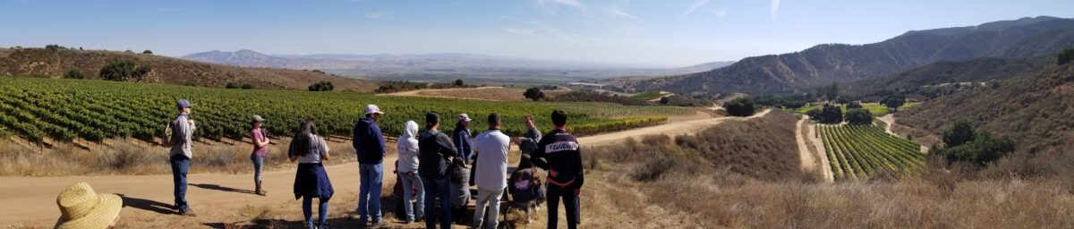 Family Farming in the Salinas Valley