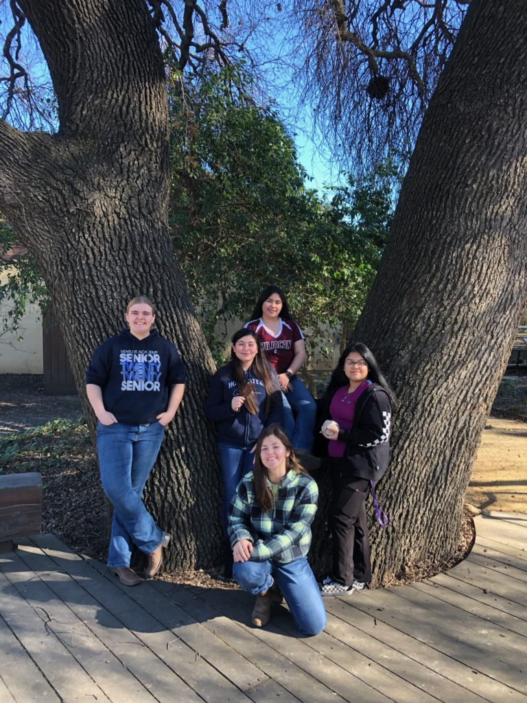 five students standing in front of a large tree in the UC Davis Arboretum