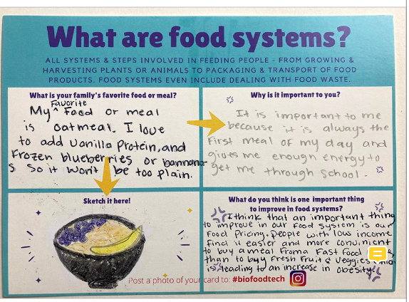 What are food systems?
