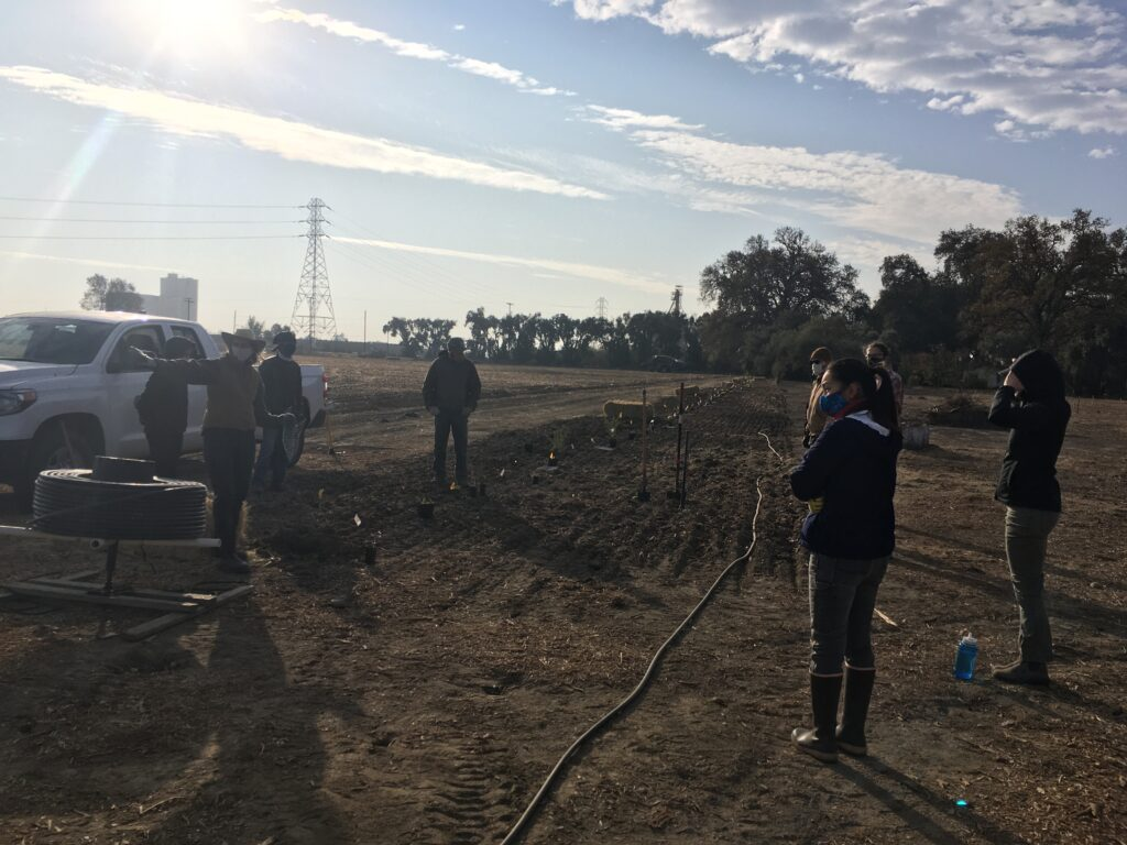 Amy Williams of Yolo County RCD explains how to set up the irrigation system.