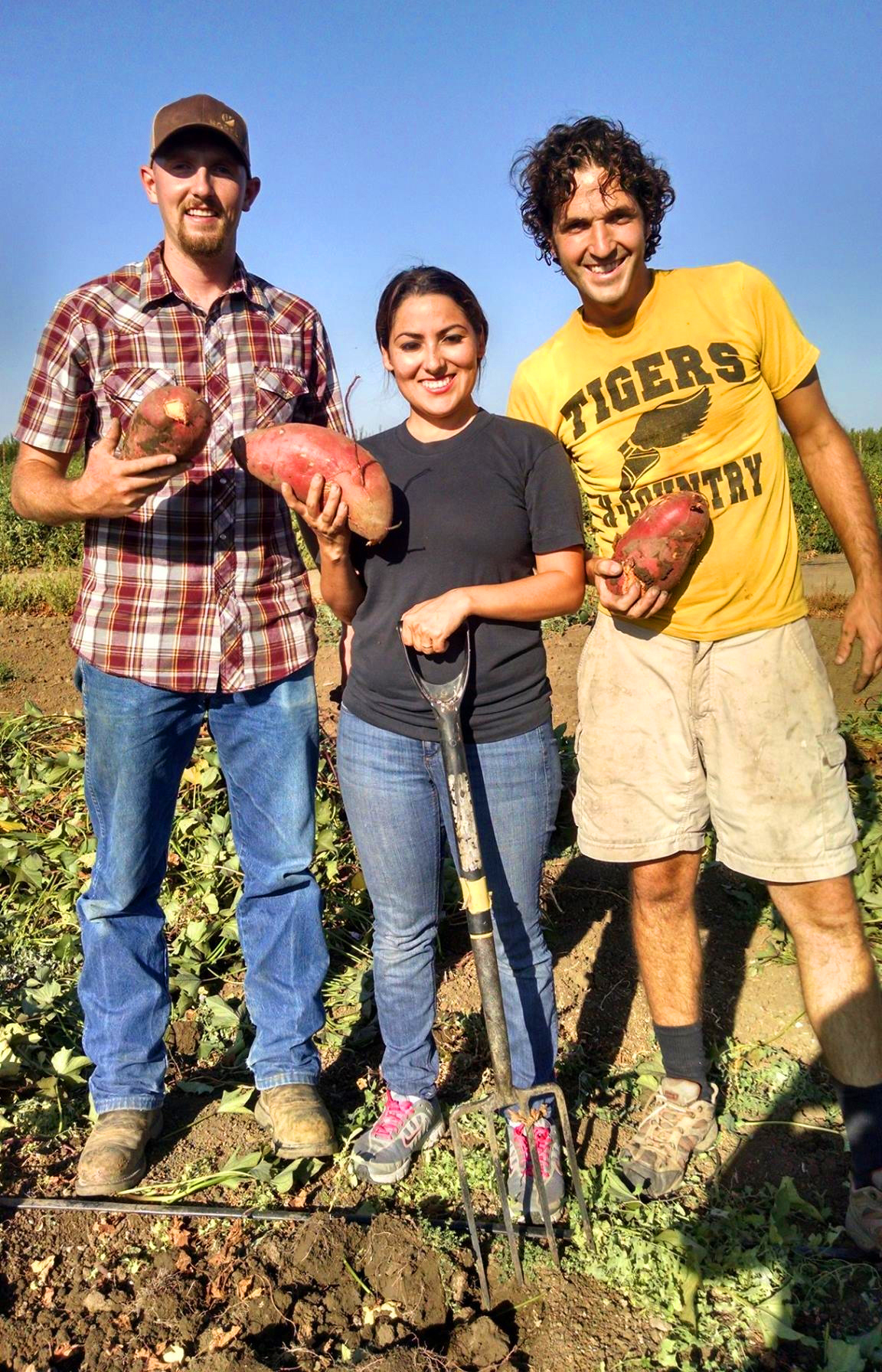 Farm Academy students harvesting sweet potatoes