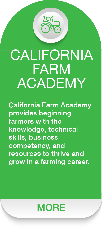 FARM ACADEMY Dash