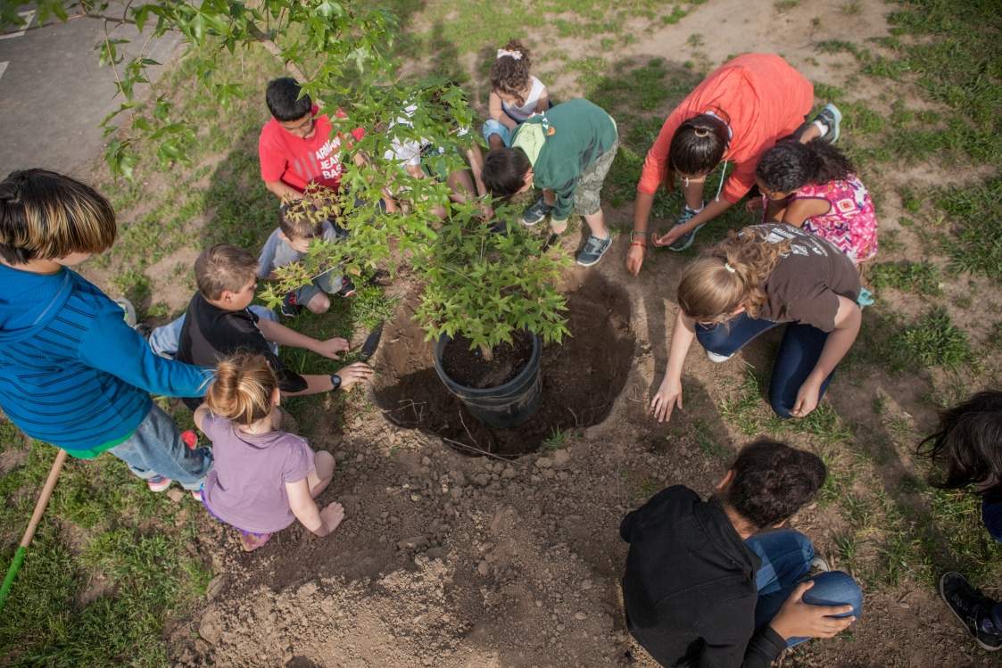 Tree Planting at Lubin Elementary