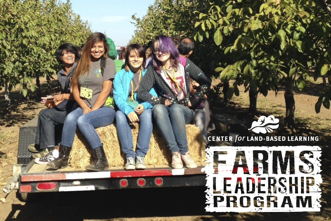 FARMS Leadership students at a farm field day
