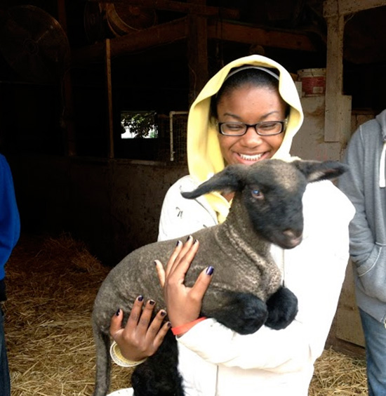 student in a yellow rain coat holding a lamb