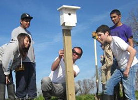 SLEWS students installing a bird box