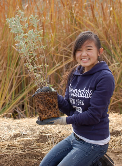 SLEWS Program student holding up a plant she is about to place into the ground