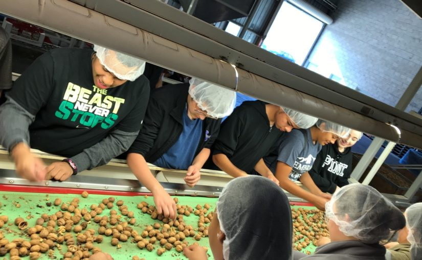 FARMS Leadership Gets Nutty in Sacramento Valley