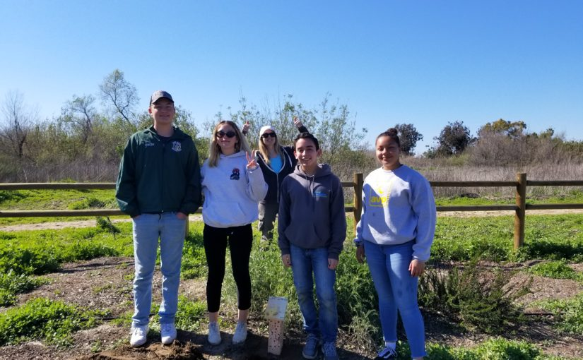 A day of habitat creation in San Diego's Tijuana River Valley