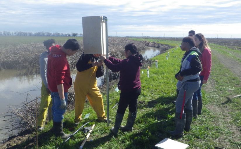Restoring wildlife habitat with Florin High School