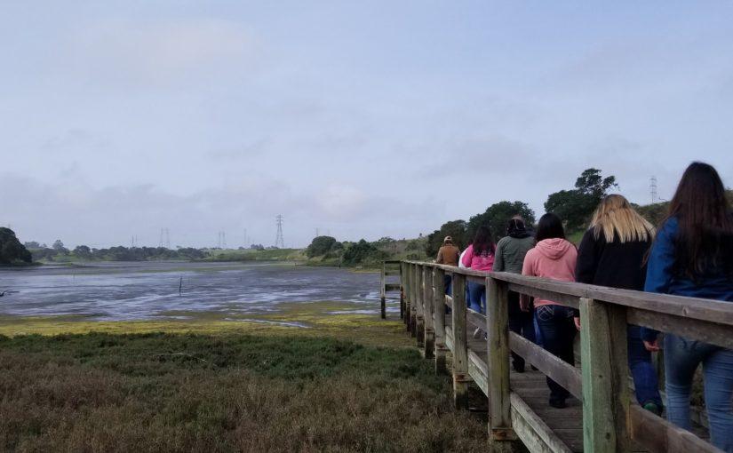 Wetlands, Waterways & Watersheds