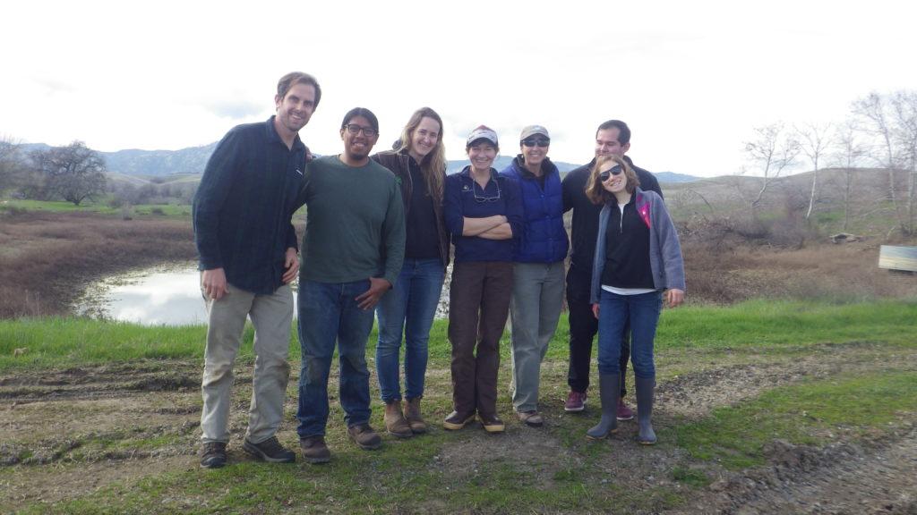 Pioneer @ Yanci Ranch
