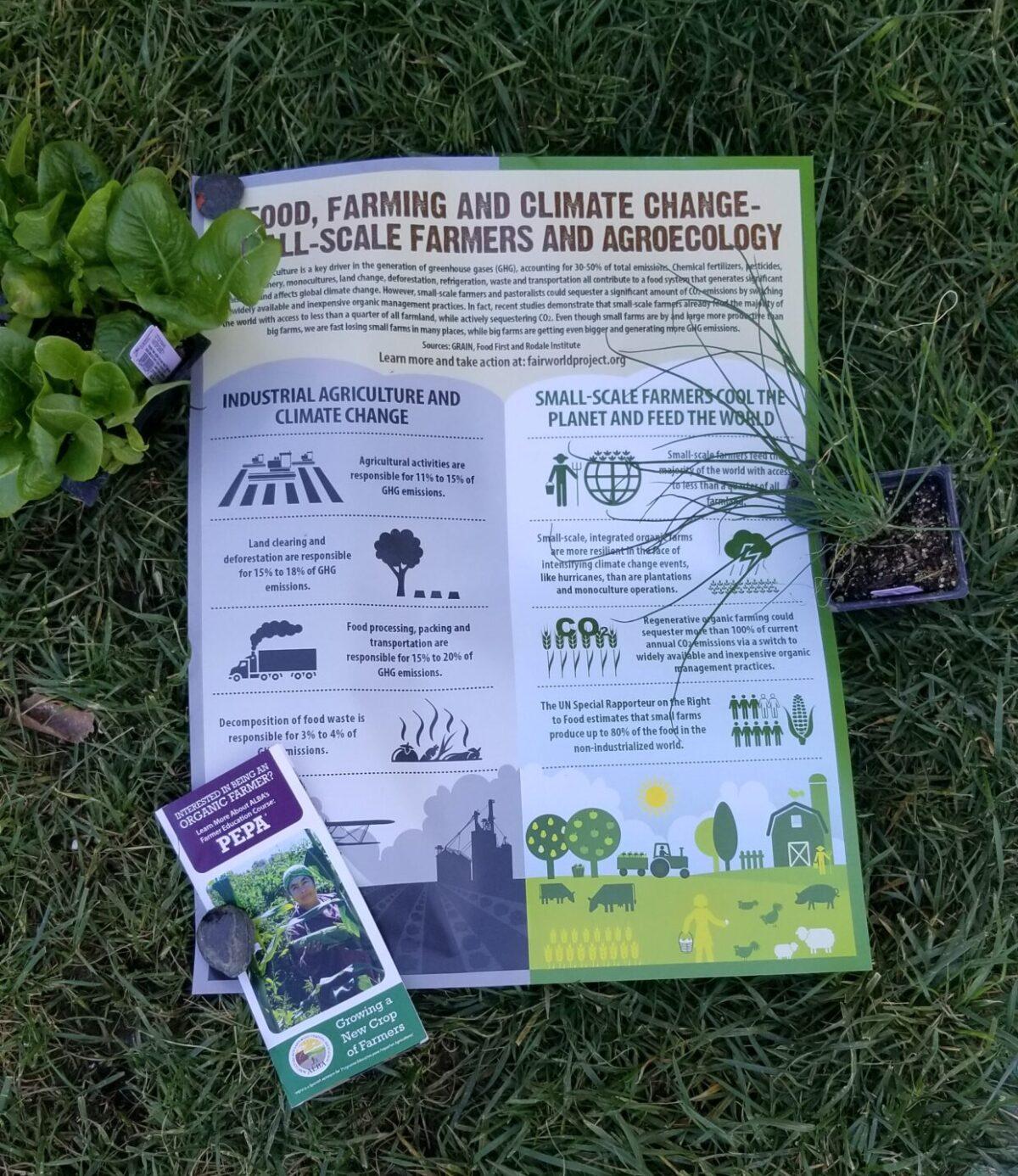 Organic Farmer Training Programs