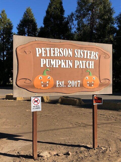 Peterson Sisters Pumpkins