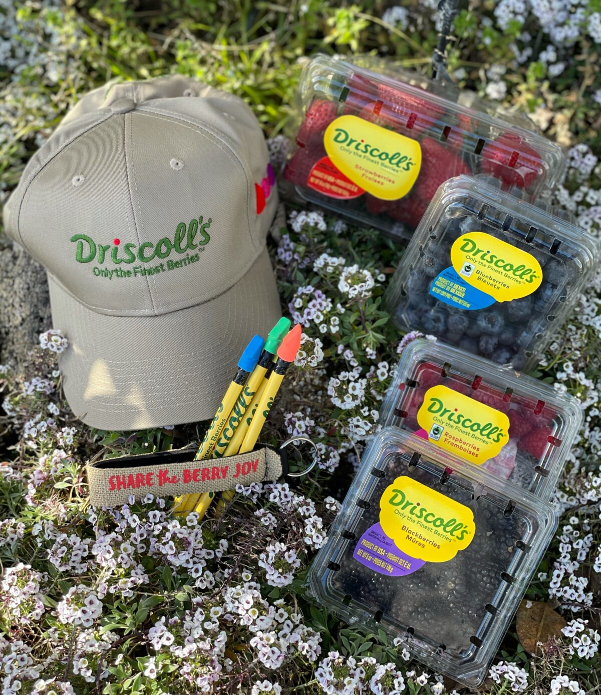 Driscoll's Berries in California