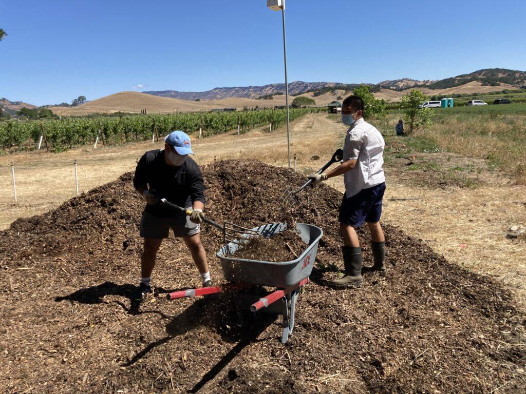 Volunteers work hard moving mulch.